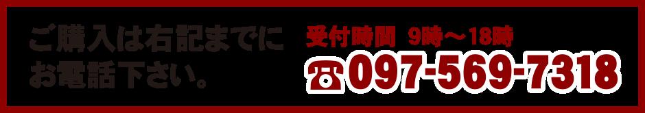 097-569-7318