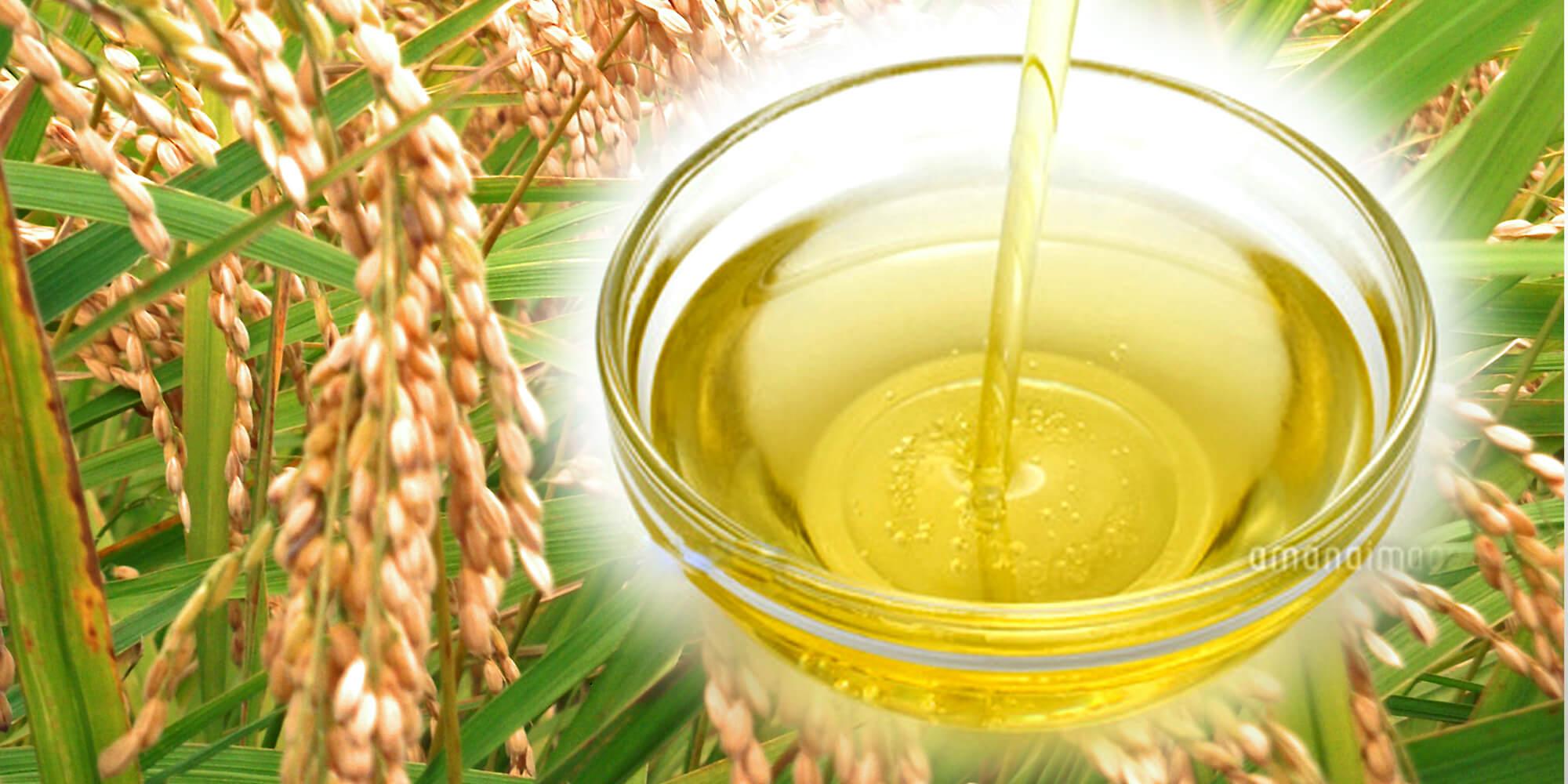 ヘルシーな米油を使用